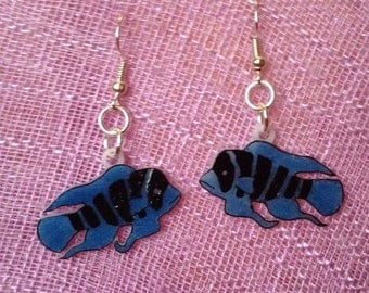 Frontosa African Cichlid fish earrings