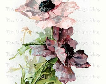 Catherine Klein Pink Purple Vintage Printable Flowers Digital Download JPG Image