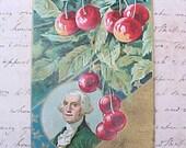 Lovely Edwardian Era George Washington Postcard with Cherries and Stars