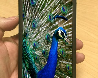 iPhone Case Peacock iPhone 6/6+ iPhone 5/5s iPhone 4/4s