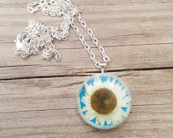 Real daisy necklace  - resin jewelry - daisy necklace with blue background - plant jewelry nature lover gift - original gift unique jewelry