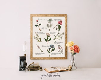 Art print digital typography printable vintage wildflowers wall decor poster illustrations botanical plant drawings kitchen INSTANT DOWNLOAD