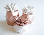 Rose Gold Set of 3 Succulents in Hexagonal, Tri-Level Containers, Tabletop, Desktop, Modern, Home and Office Decor