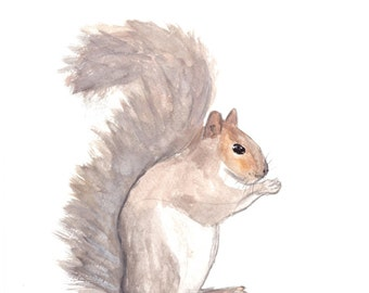 Squirrel art ORIGINAL watercolour painting squirrel watercolour nursery art home decor wild animal art, 9 x 12 inch