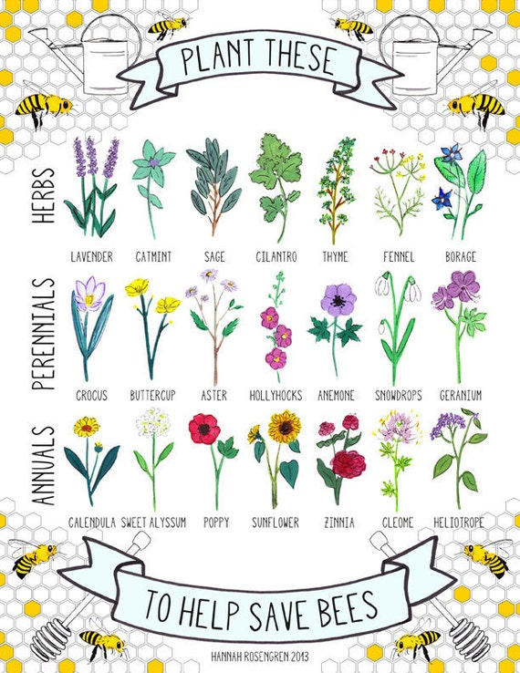 """8x10"""" Plant These to Help Save Bees Print / save the bees / pollinator preservation / environmental awareness"""