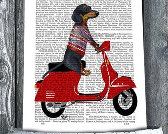 Dachshund On Moped - Dachshund print, doxie print Dachshund illustration Dachshund picture doxie decor gift for doxie lover Digital Painting