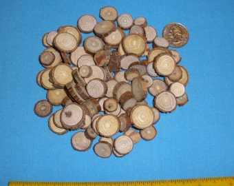 Tree Branch Slices, 1/2 Cup of Small Wood Rounds for Crafting, Embellishments, Rustic Art Projects