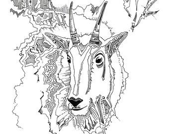 Mountain goat drawing, mt goat, wildlife artwork, fine art print, wild animals, nature artwork, mt goat illustration, natural history art