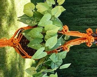 Macrame plant hanger. 70's Summer Sunset style