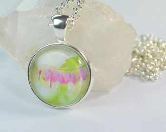 Bleeding Heart Flower Necklace, Bleeding Heart Jewelry, Photo Necklace, Bleeding Heart Necklace, Spring Necklace, Photography Jewelry
