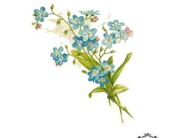 Vintage Forget me knot floral Illustration tattoo  Body Art, Wickedly Lovely Skin Art Temporary  tattoo (includes two tatoos)
