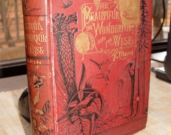 The Beautiful, The Wonderful and the Wise ~ L.N. Chapin First ? 1884 / 1883