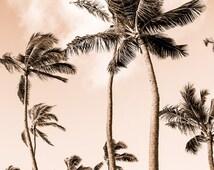 Tropical Decor, Tropical Beach Photography, Palm Tree Photo, Hawaii Art, Hawaiian Decor, Retro Beach, Funky Art Print, Beach Wall Art