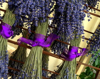 1 Dried Lavender Bouquet: Vibrantly Colored English Lavender, Bundle, Bunch