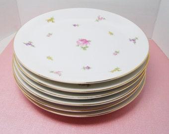 Haviland Rose Chintz China Plates, SET of 6,  Salad, Luncheon or Dessert Plates - Bavaria Germany