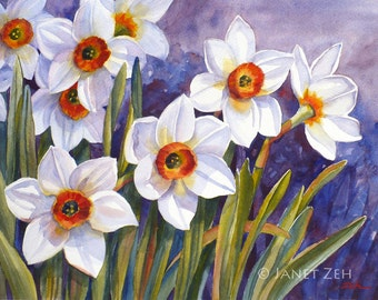 Daffodil Art Original Watercolor Matted Painting Narcissus Flower Spring Wall Decor 11x15 by Janet Zeh Original Art