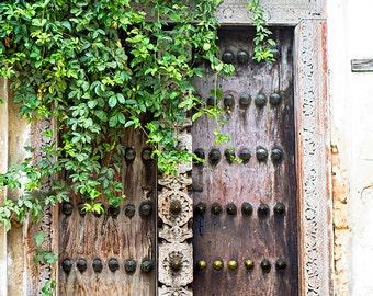 "Door Photography, Travel Photography, Zanzibar, Art Print, Architectural Photography, Large Print, Wall Decor ""Vine Covered Door"""