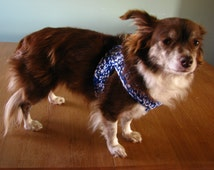 Crochet Dog Harness,Small Dog Harness,Puppy Harness, Crochet Dog Harness, Blue & White Dog Harness, Little Dog Harness, 21.97