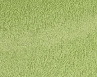 Sage Green Minky Fabric