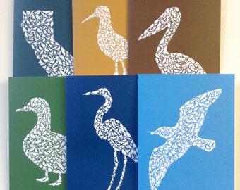 California Shore Birds Greeting Card Set of 6