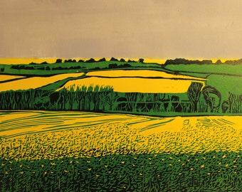 Original linocut print- Rapeseed Field