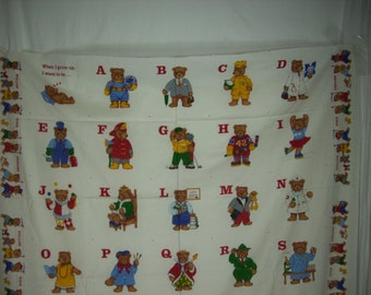 Alphabet  bears fabric pane  l A to Z   When I grow up I want to be   when I grow up doctor king teacher lawyer