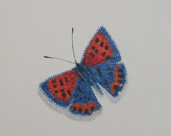 BUTTERFLY PRINT, From My Original Art, Insects, Lepidoptera