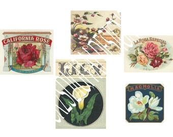 A4 vintage flower labels x 5