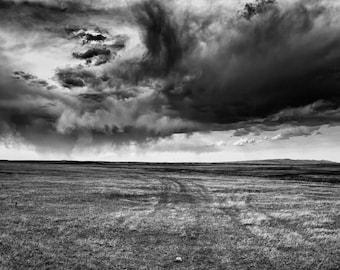 A Prairie Road in Wyoming
