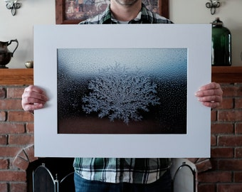 LIMITED EDITION PRINT: Beauty at Minus Forty 002