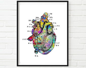 Vintage Heart Anatomy Watercolor Art Print Wall Decor Home Decor  Instant Download Printable Digital Medical Illustrations