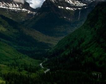 Glacier Park Tall