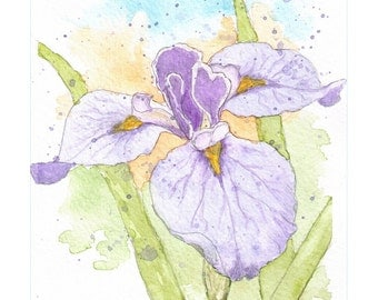 original watercolor prints of nature