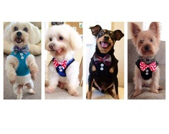 dog harness with bow tie, custom bow tie, bow tie, bow, harbess , cat harness, cute harness , black harness,