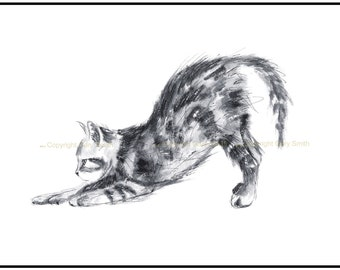 Kitten at Play-Cat cards-  cat prints- greetings card- prints- birthday cards. Cat print on canvas paper