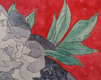 Peony II - watercolor and ink on paper