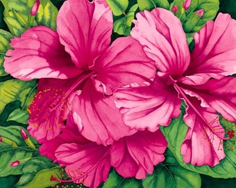Watercolor painting...PRETTY IN PINK...hibiscus...giclee