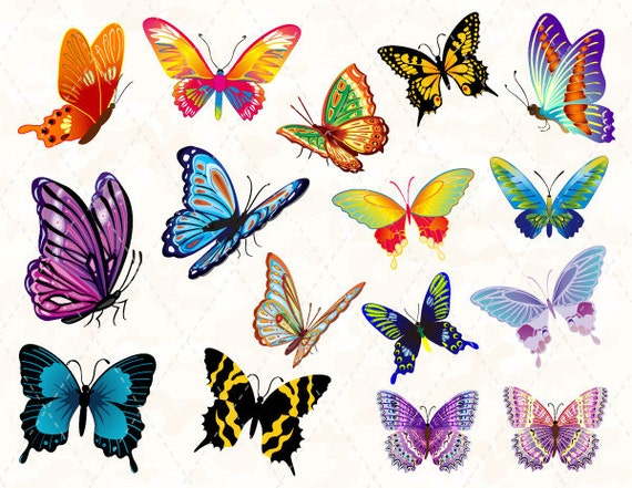 Digital Butterfly Clip Art Colorful Butterfly Clipart Pink