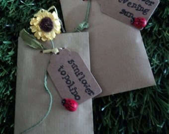 Personalised Rustic Wedding Favours Sunflower Seed Ladybird Envelopes Gifts