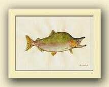 Pink Salmon fish - fish watercolor animal decor-salmon fly fishing -river wall art -pink salmon- Original watercolor painting- Juan Bosco