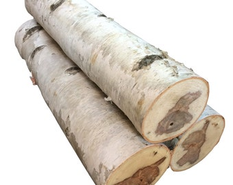 Large White Birch Fireplace Log Set of 3 Free Shipping