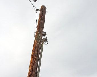 Airplane and Telephone Pole, Flight, Landing, Los Angeles, Photography, Home Decor