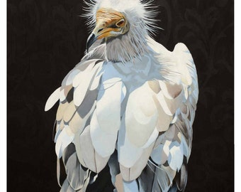 Purifying Angel Of The Decomposing Carcass - 24 x 18 Art Print - Vulture - Bird - Nature - Giclee - White