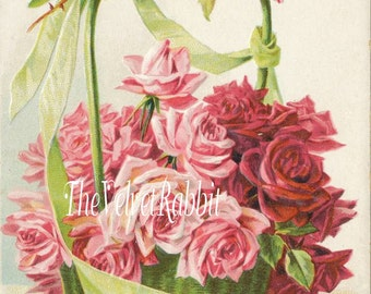 Canvas Paper Print*Pink roses in a basket*Gorgeous*8x10 inches*Free shipping in the USA