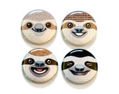 4 Sloth Faces One Inch Magnet or Pinback Button Set