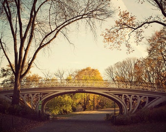 "Central Park Gothic Bridge, NYC Photography, Architecture Print, Fall Photography, New York Sunrise Wall Art,  ""Autumn Spandrels"""