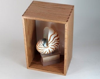 Shadow Box, Display Case, Tabletop Display, Wall Mount or Desktop