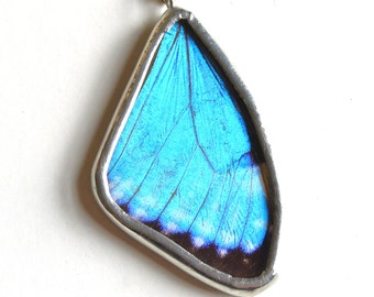 Real Butterfly Wing Necklace. REAL Butterfly Wing Jewelry. Small Blue Morpho portis Necklace. Insect Necklace. Butterfly Necklace.