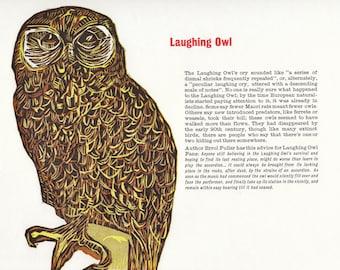 Woodcut and Letterpress Extinct Bird Print: Laughing Owl