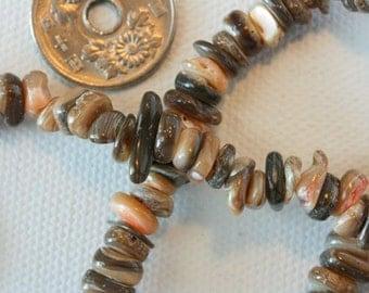 Organic shape abalone beads. Grey peach off white. Natural organic ethnic boho hippie beads for stringing beadwork jewelry making.